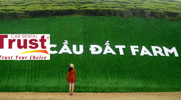 Private Taxi Transfers From Ho Chi Minh To Dalat