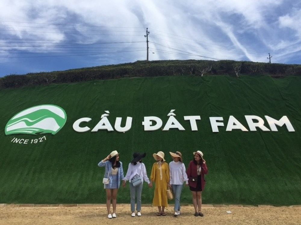 2Days Dalat Tour From Ho Chi Minh | Dalat Private Tours Hình