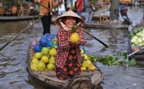 Rent A Car With Driver Mekong Delta Day Tour From Ho Chi Minh