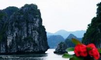 6Days Hanoi Tours | Halong | Sapa | Bac Ha Market